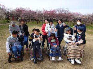 彰宏さんの絵日記No.15 梅を見に行きました